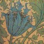 anemone t Tiling William Morris Wallpaper Backgrounds