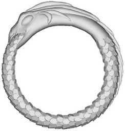 ouroboros1 Ouroboros Ring